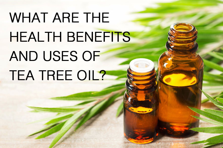 What Are The Health Benefits and Uses of Tea Tree Oil?